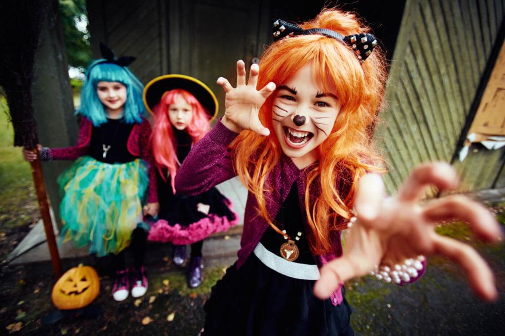 Halloween at Paradise Park